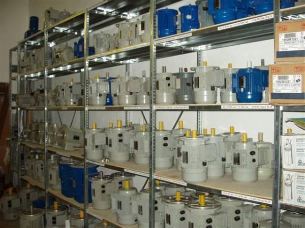 Motori elettrici normali e autofrenanti di tutte le velocità e tensioni